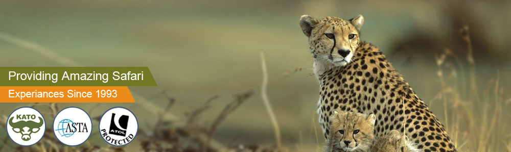 Providing Amazing Safari :: Experiences Since 1993